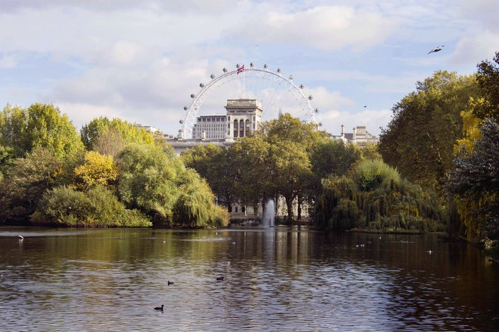 Image of the London Eye from St James Park, standing on the bridge overlooking the water