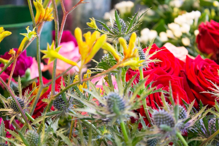 Colourful flowers at Acton Flower Market, London